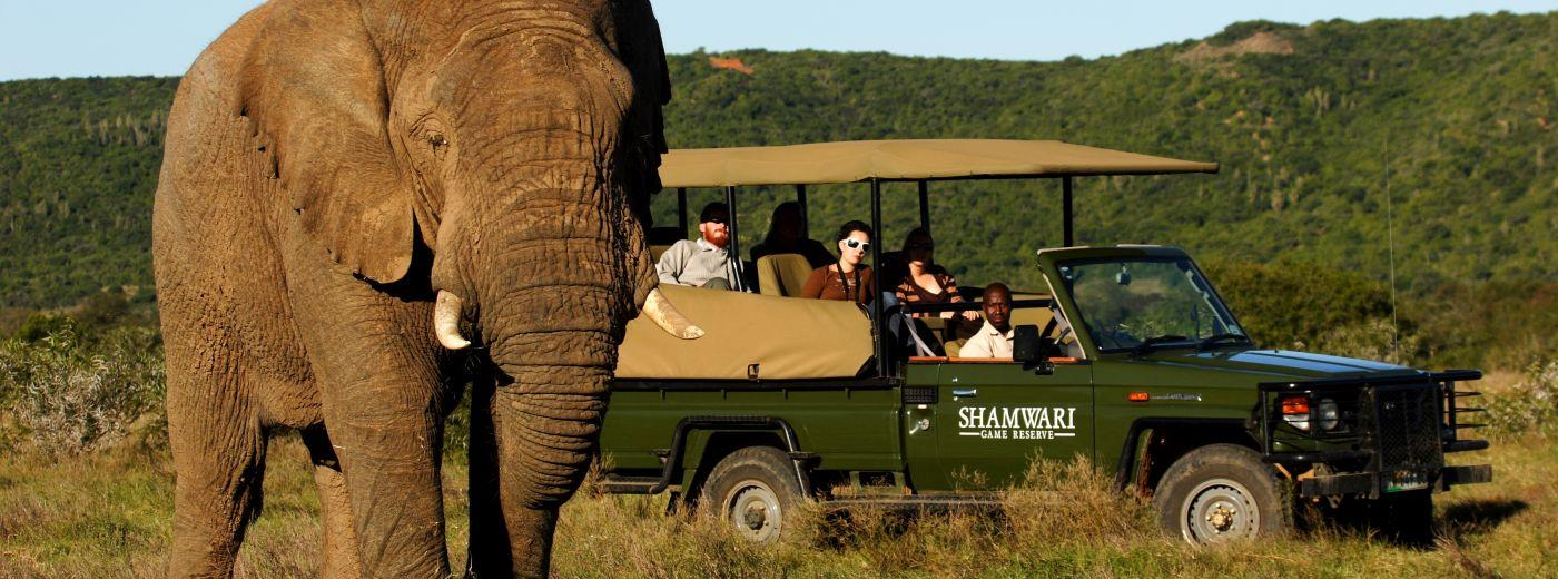 Shamwari Game Reserve