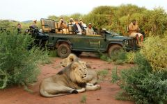 Northwest Province Safaris