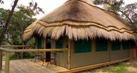 Affordable Safaris at Wildside Camp in the Waterberg, South Africa
