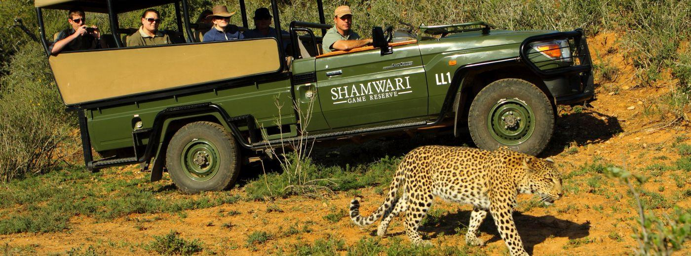 Special Offers and Discounts on Safaris in the Eastern Cape