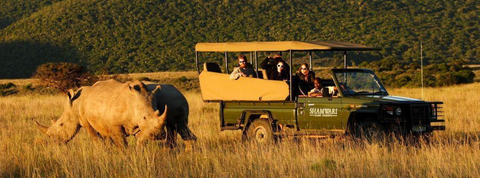 Eastern Cape Safari Tours