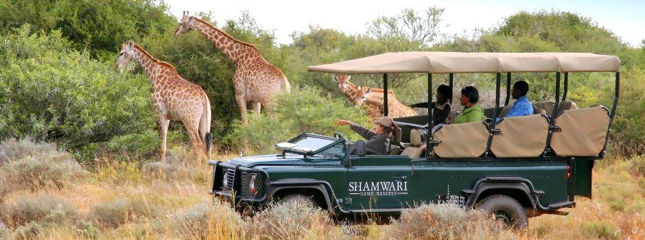 Family Safaris in the Eastern Cape