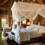 Camp Jabulani - 50% discount on 3rd night