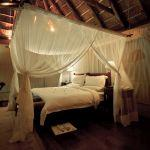 Msenge Bush Lodge: Stay 3 nights for the price of 2