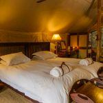Rhino Plains Camp: Stay 4 nights for the price of 3