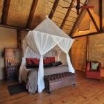 Bush Lodge: Stay 4 nights for the price of 3