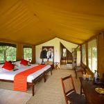 Elephant Pepper Camp: Stay 3 nights for the price of 2