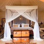 Cottars 1920's Safari Camp: Stay 3 nights for the price of 2