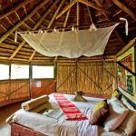 Room at Umlani Bushcamp