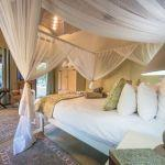 Kambaku Safari Lodge: Stay 4 nights for the price of 3