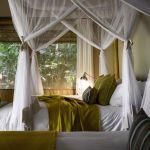 Gorilla Forest Camp: Stay 3 nights for the price of 2