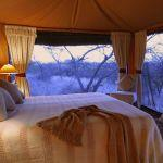 Lewa Safari Camp: Stay 3 nights for the price of 2