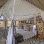 Ubuntu Camp: Stay 3 nights for the price of 2