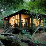 Phinda Forest Lodge and Cape Town Combo