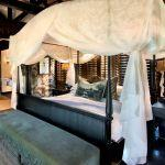 Phinda Vlei Lodge: Stay 4 nights for the price of 3