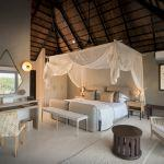 Book 3 nights on Safari and get 2 nights free in Cape Town