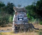 Welcome to Long Lee!, Shamwari Game Reserve, ©Long Lee Manor