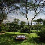6 Night Escorted Safari Packages