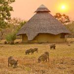 Chitengo Safari Camp