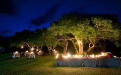 Zululand Tree Lodge