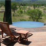 pumba-bush-lodge