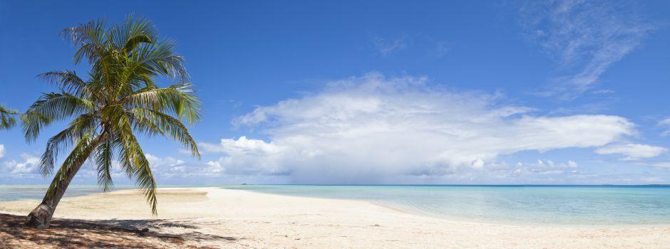 Tanzania Safari & Beach