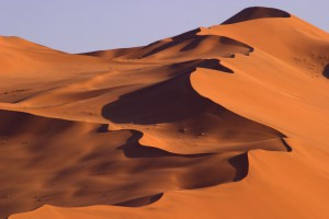 http://www.dreamstime.com/stock-images-busy-dune-image2074464