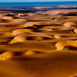 NamibiaTracks&Trails-CopyrightFINAL