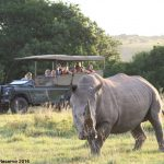 Lalibela Game Reserve - Mark's Camp - CopyrightFINAL2