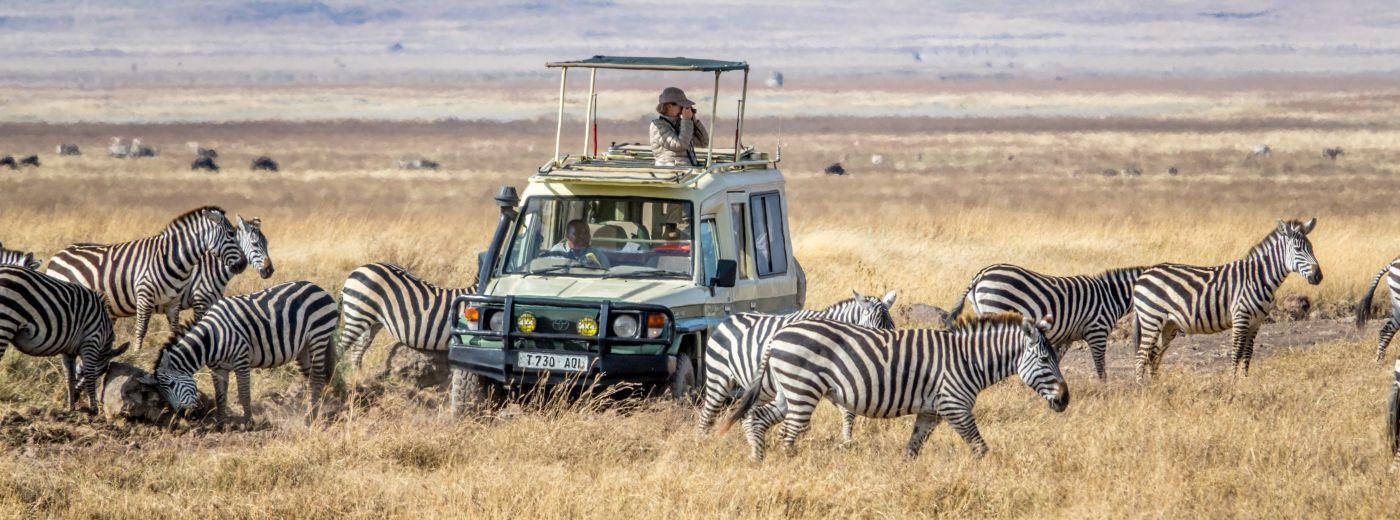 Safari Travel In The Age Of Covid-19
