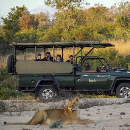 Game drive sighting from Jock Safari Lodge