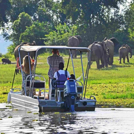 Elephant on the riverbank, seen from a boat cruise from Bakers Lodge