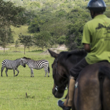 Horse Safari in Lake Mburo NP