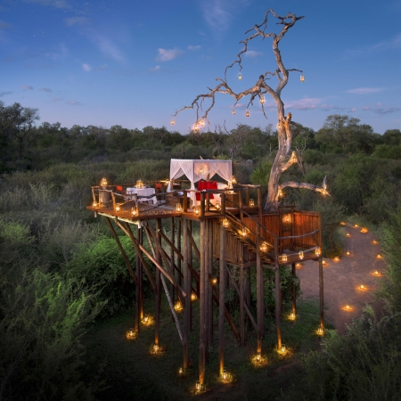 Treehouse experience at Lion Sands River Lodge