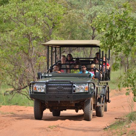 Family Game Drive at Mabula Game Lodge