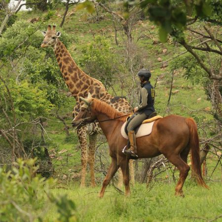 Horseback Safari at Pakamisa