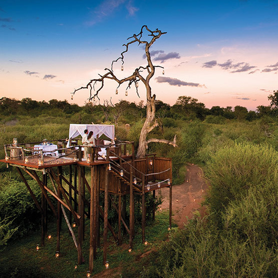Sleep Under The Stars In Kruger