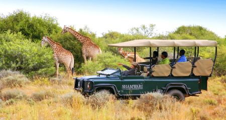 Enjoying a family safari at Shamwari.