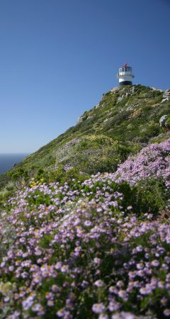 View towards the Cape Point lighthouse
