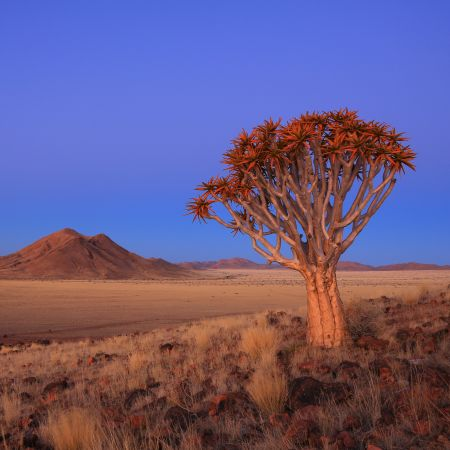 Namibia Visitor Facts Driving Climate Visas