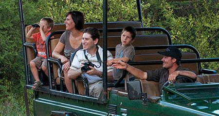 Safaris For All The Family