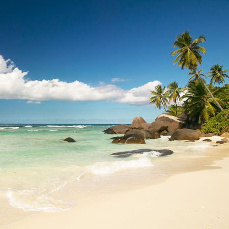 Silhouette Island beach and boulders