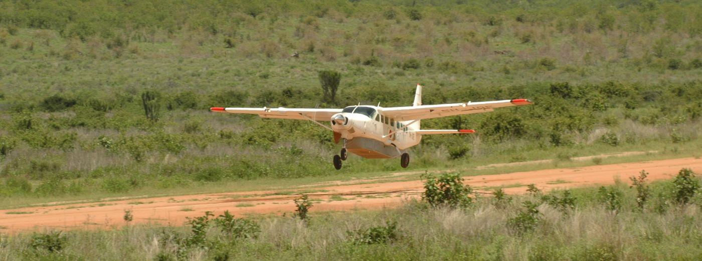 Tanzania Northern Circuit Luxury Fly-In Safari and Beach