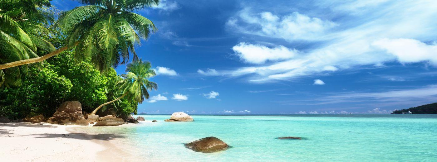 The Exotic Seychelles