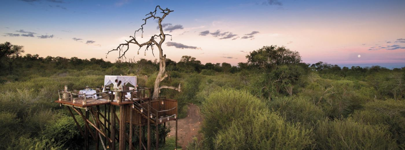 The African Safari Bucket List