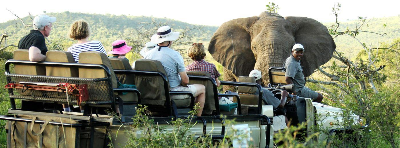 Amazulu Private Game Reserve