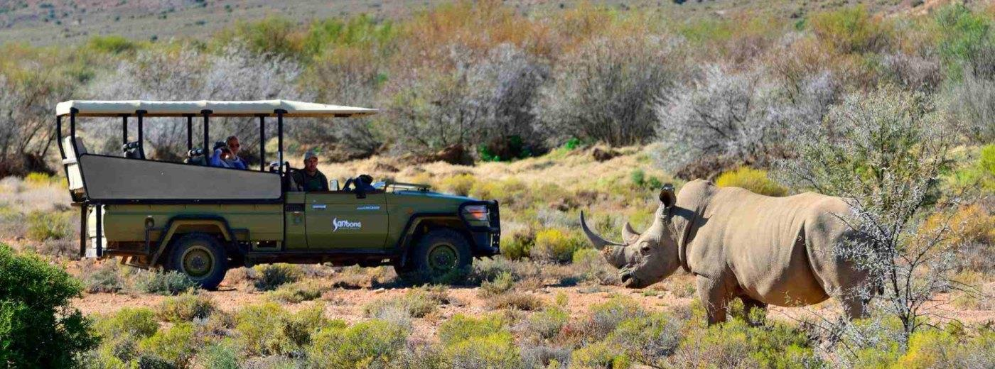 Discover South Africa at a Relaxed Pace