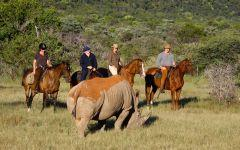 ITINERARY-01964: Alternative Wildlife Experiences in South Africa