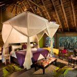 Jaci's Safari Lodge: Stay 3 nights for the price of 2