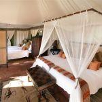 Thula Thula Tented Camp